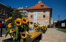22 listopada krakowskie muzea otworzą swoje drzwi dla zwiedzających, w dodatku za darmo!