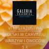 Smakowite dzieła sztuki w Galerii Krakowskiej ( zaproszenie )