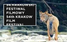 Nauka na Krakowskim Festiwalu Filmowym