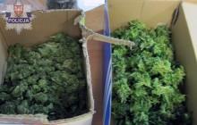 Nowy Sącz ? Łososina Dolna: Policjanci zatrzymali kolejnego dilera narkotyków