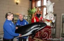 Morświn spotkał się w Magistracie z ... Lajkonikiem [ zdjęcia ]