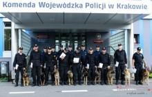 Psy na służbie w małopolskim garnizonie Policji [ fotorelacja ]