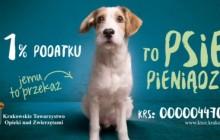 Przekaż 1% podatku na rzecz Krakowskiego Towarzystwa Opieki nad Zwierzętami