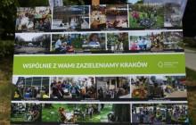 Pierwszy rok działalności Zarządu Zieleni Miejskiej [ zdjęcia ]