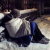 Zimowe obowiązki wobec współmieszkańców