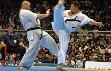 Mistrzowie sztuki walki