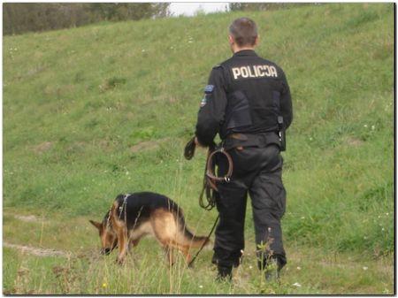 Tarnów. Policjanci odnaleźli zaginionego mężczyznę.