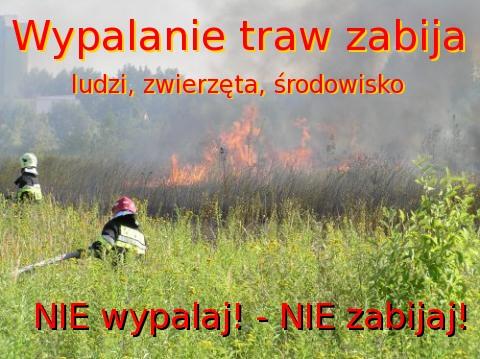 Bezmyślne wypalanie traw - o krok od tragedii
