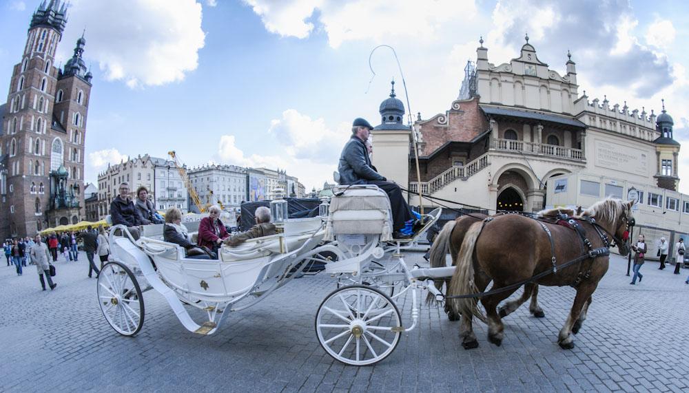 Zasłabnięcie konia w Krakowie (AKTUALIZACJA)