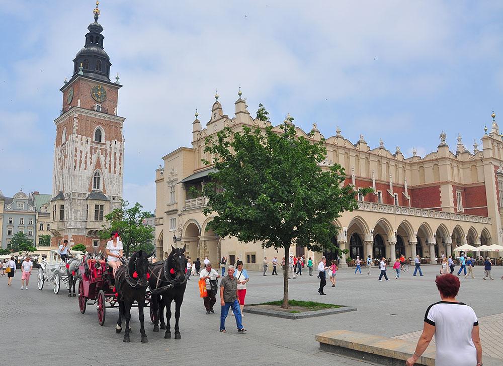 Krakowskie dorożki pod lupą strażników miejskich