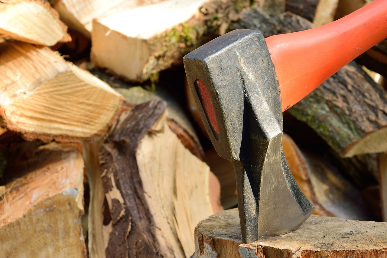 Wycinki drzew: przepisy w pigułce